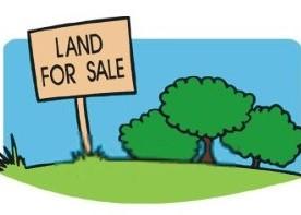 أراضي-للبيع