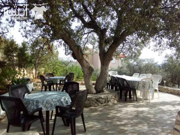 المزرعة الشامية السلط الصبيحي 75 دينار <br> <br>مزرعه للتأجير...