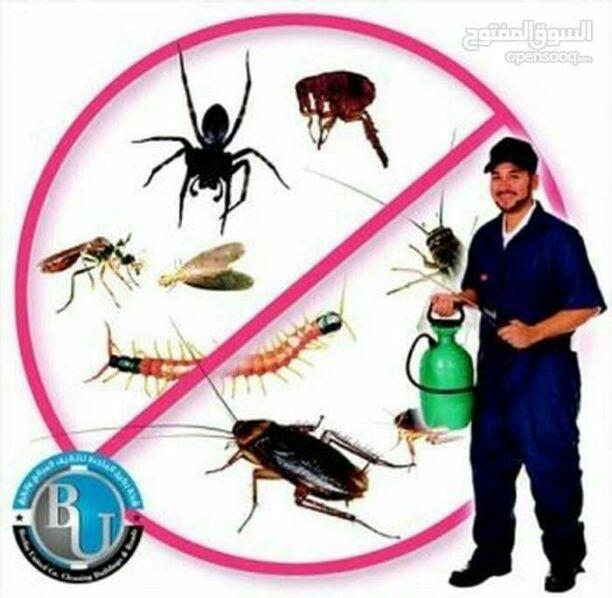 شركة لمسه الابتكار لخدمات التنظيف ومكافحة الحشرات تنظيف الفلل...