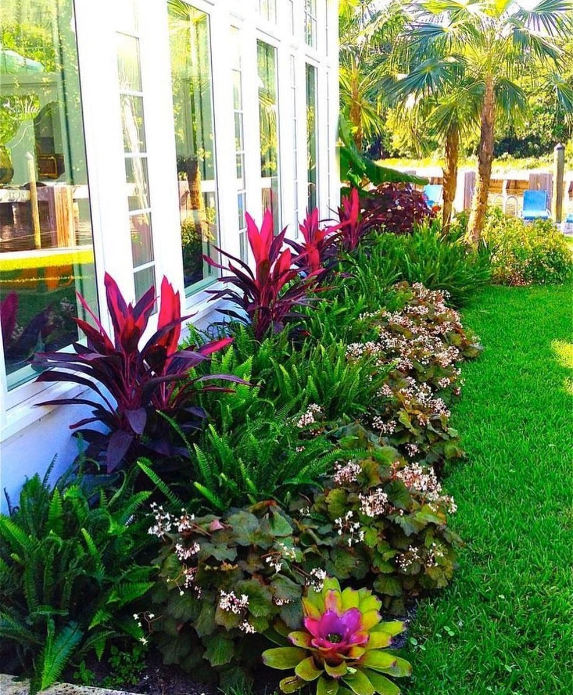 توريد نباتات زينه وزهور ونجيله طبيعيه...