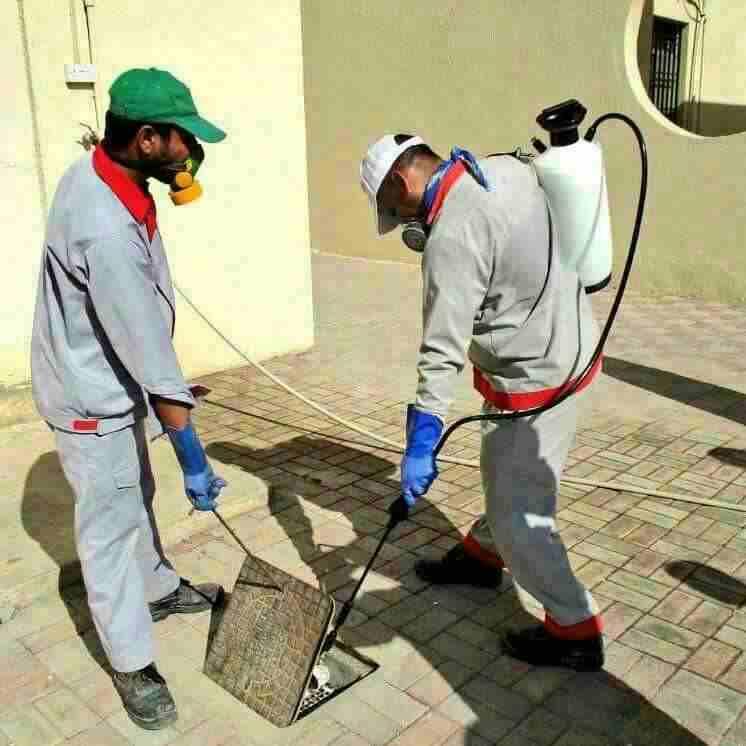 نظافة عامه وغسيل مجالس وتنظيف شقق وفلل...