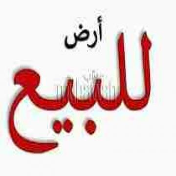 - ارض للبيع بعد كوبرى الفحص بنها  كود 4103  ارض 120 م  عمق 10 م...