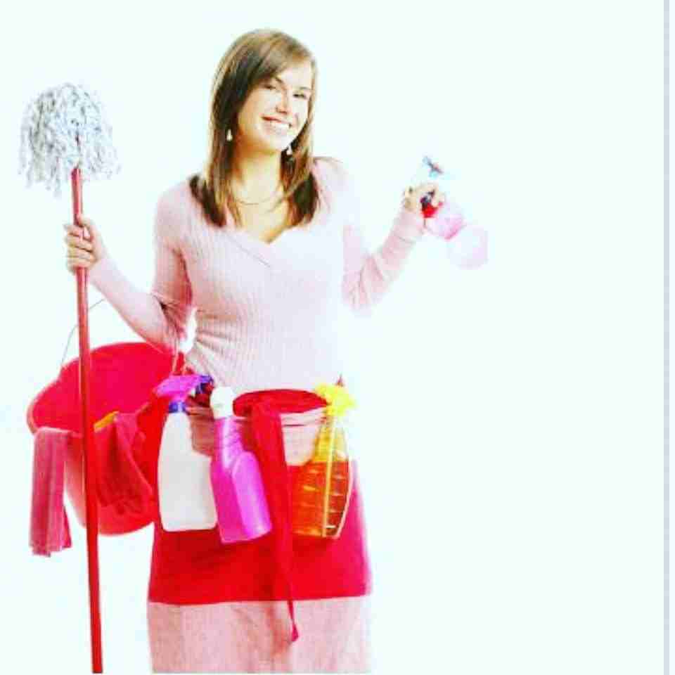 شركة متميزة للتنظيف ومكافحة الحشرات ( بأسعار مناسبة جداً وفي متناول الجميع )تنظيف الفلل -  التنظيف المنزلي ولاننا...
