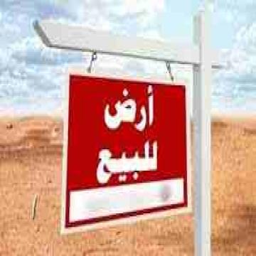 - ارض للبيع شارع كليه تجارة بنها  كود 4112 ارض 140 م  واجهه 14م...