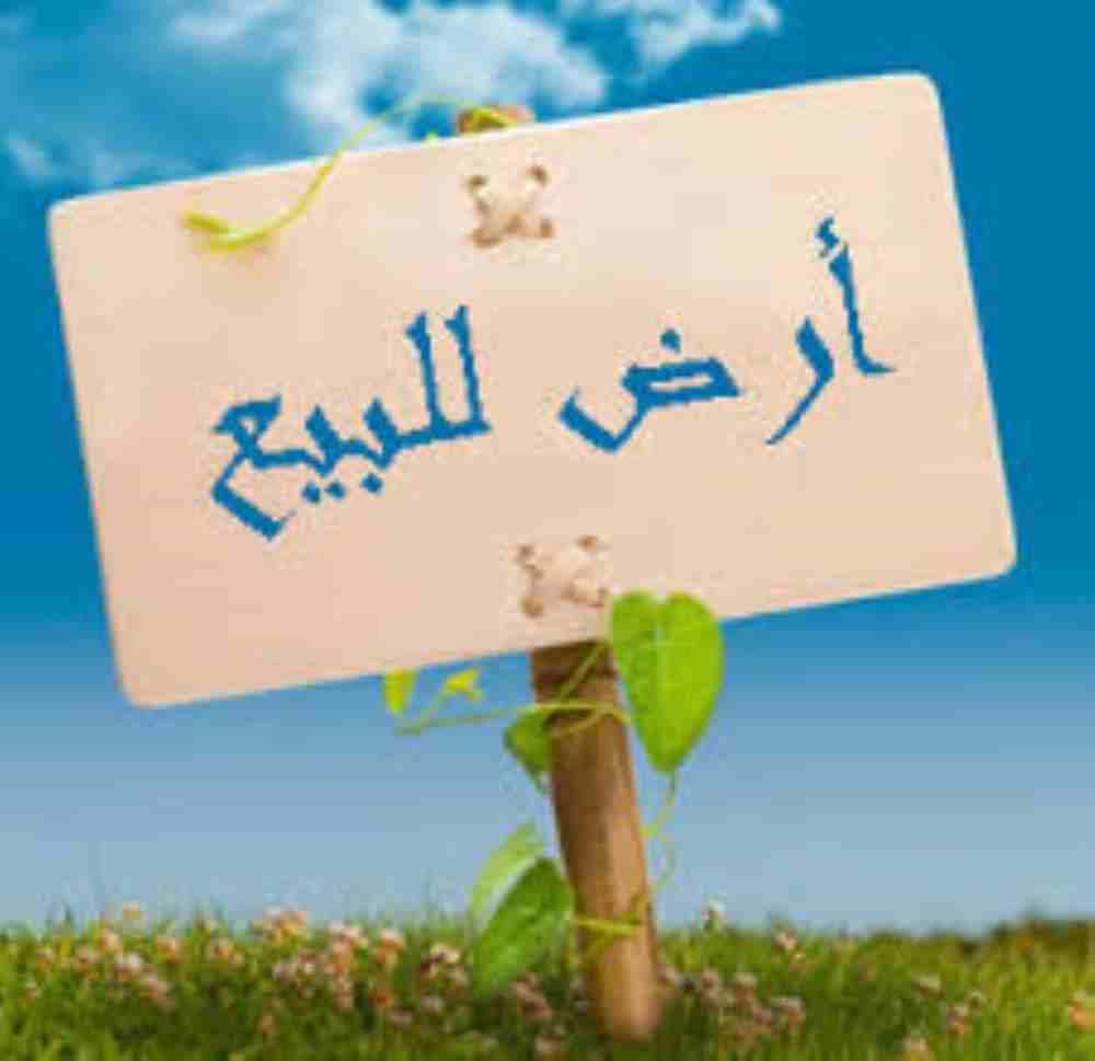 ارض للبيع طريق النوادى بنها  كود 4115 ارض 120 م  واجهه 10 م وعرض...