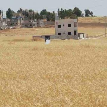- اراضي للبيع  مساحة 500 م دفعة أولى 7000 دينار اقساااط شهرية...