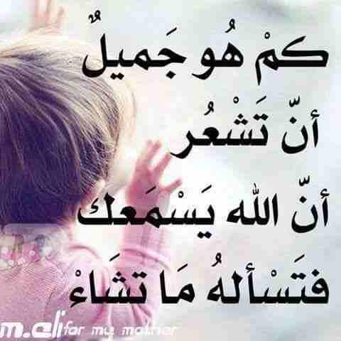 عمرو موسي العمراوي