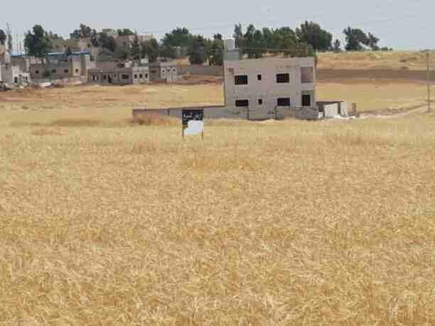 اراضي للبيع منطقة جاوا مساحة 500 م دفعه أولى 7000 دينار اقساط شهرية...