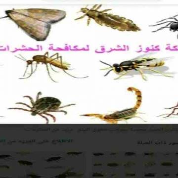 - شركة مكافحة الحشرات الصراصير والقوارض والزواحف بأرخص الأسعار...