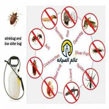 - إبادة جميع انواع الحشرات المنزلية بأفضل انواع مبيدات الصحة...