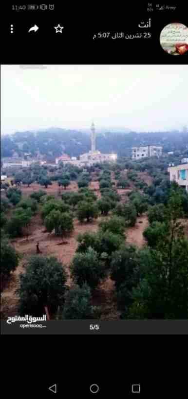 (مدينة السعادة) اراضي سكنية للبيع فى الياسمين-شاملة الخدمات معفية الرسوم-قرب حديقة الحم�-...