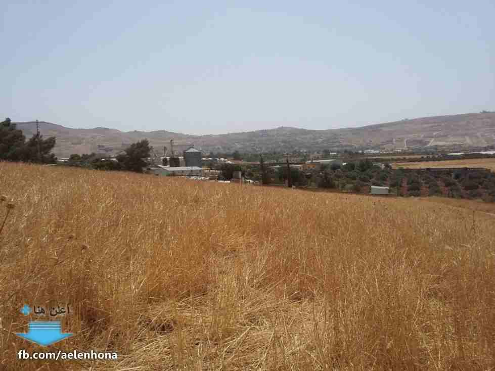 ارض سكنية بالمنامة 450 متر زاوية شارعين فقط 90 الف درهم-  الأردن   عمان قطعة ارض في...