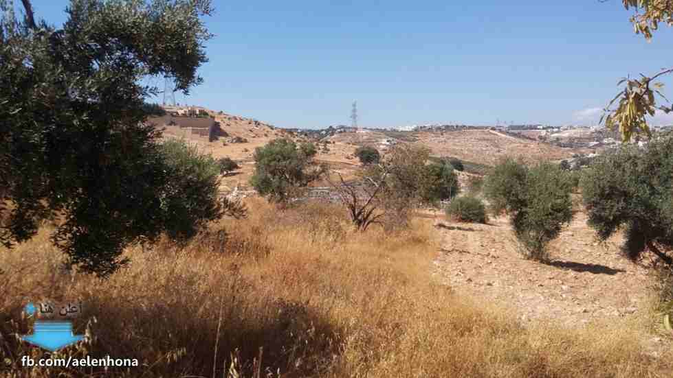 ارض سكنية بالمنامة 450 متر زاوية شارعين فقط 90 الف درهم-  الأردن   عمان قطع أراضي...