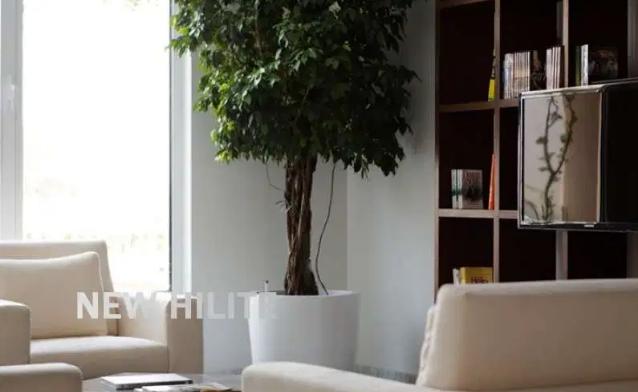 Mamsha Al Saadiyat, Saadiyat Cultural District, Saadiyat Island, Abu Dhabi-  NewHilite Realtors are...